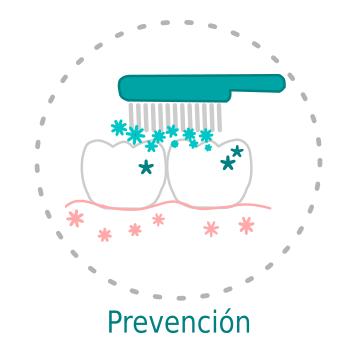 Higiene dental prevención